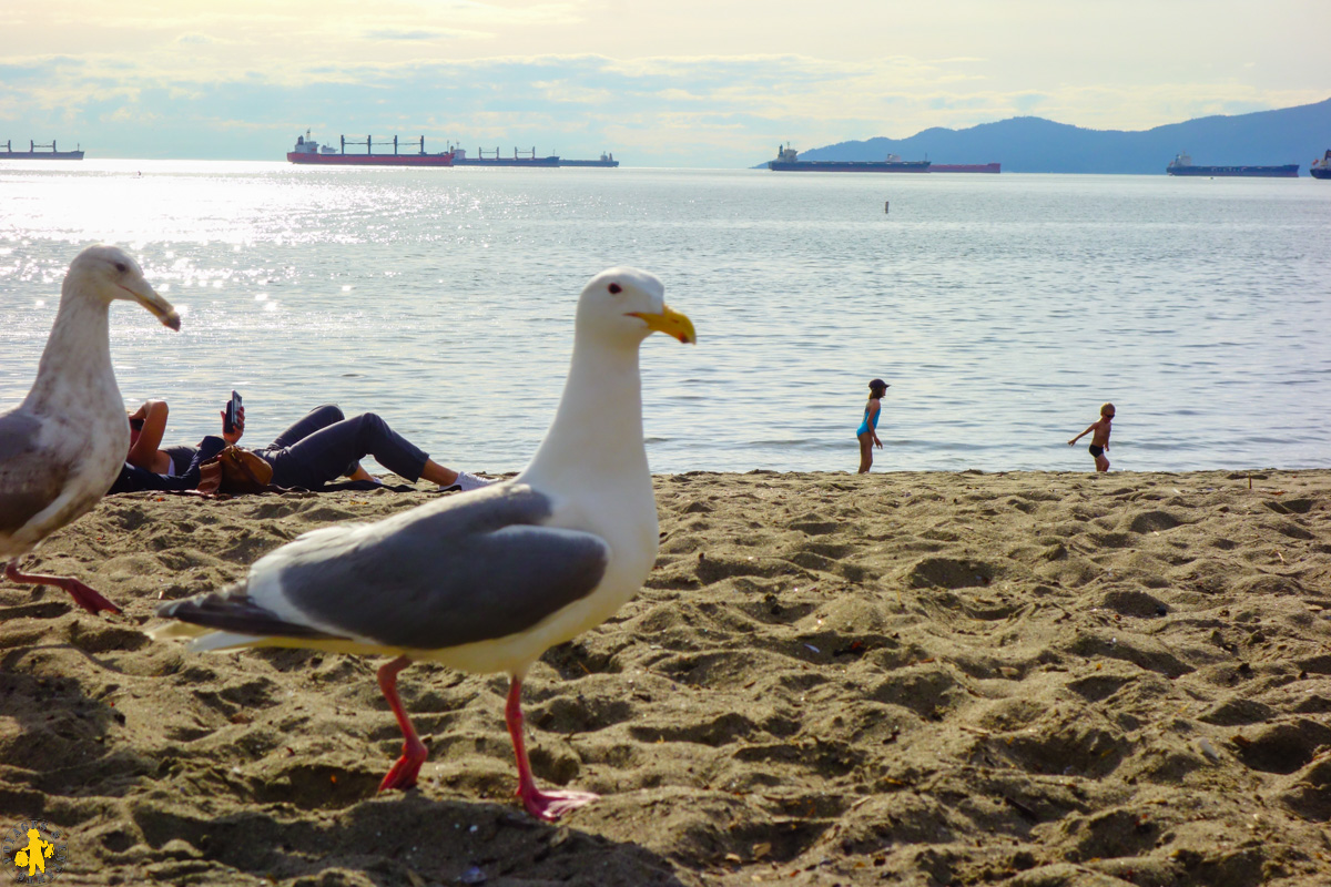 2017.06.02 Ouest canadien Vancouver 3 English beach (67a)-12017.06.01 Ouest canada