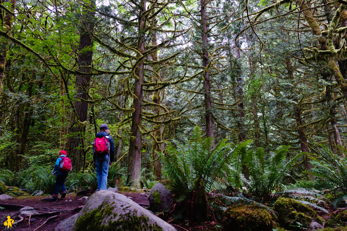 2017.06.19 Ouest canadien Hope 1 Lynn canyon park Vancouver (70)-12017.06.01 Ouest canada