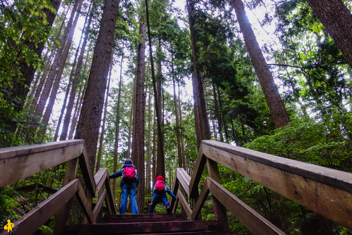 2017.06.19 Ouest canadien Hope 1 Lynn canyon park Vancouver (85)-12017.06.01 Ouest canada