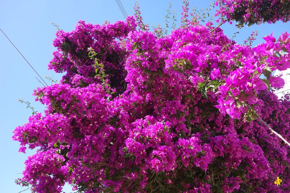 Amorgos avec des enfants couleurs des cyclades
