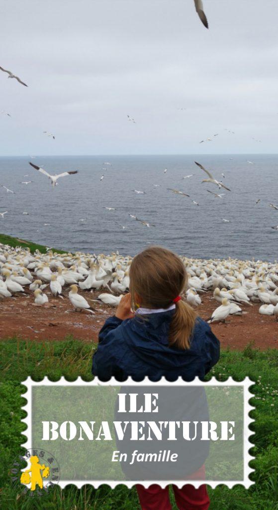 Ile Bonaventure en famille pinterestVisiter l'Ile Bonaventure en famille | VOYAGES ET ENFANTS