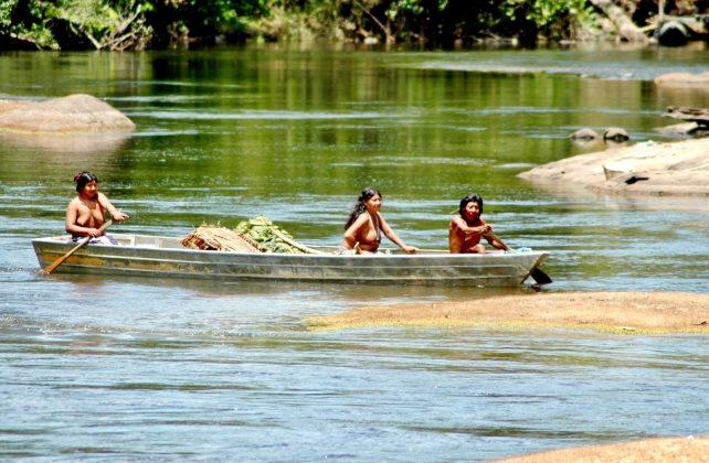 Où aller en Amazonie : Colombie, Pérou, Equateur, Guyane ?